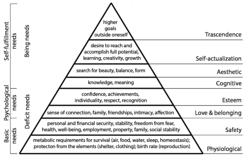 Illustration-based-on-Maslows-Hierarchy-of-Needs-HoN-described-in-2-p2-104