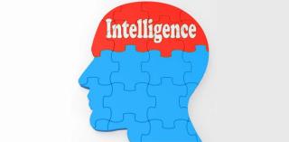 Ethics IQ
